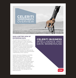 Celeriti Business Intelligence